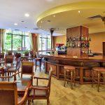 estreya-residence-lobby-bar-1