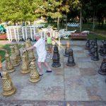 hrizantema-chess-1