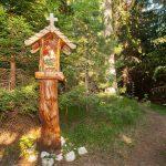 m_yastrebets-park_forest